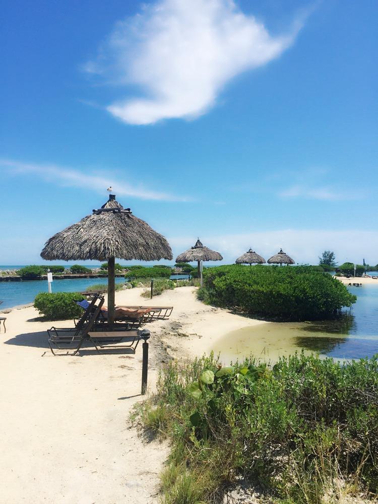 Best Restaurants Near Hawks Cay