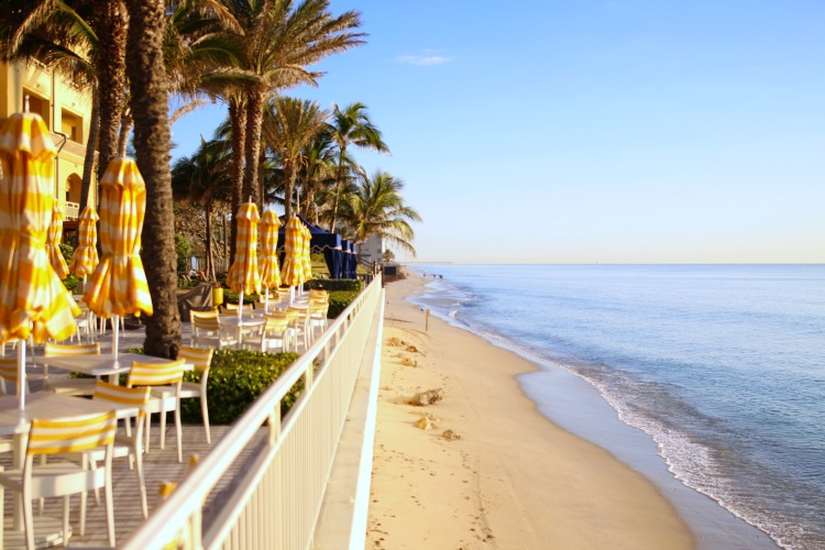 Luxury Palm Beach Hotel review
