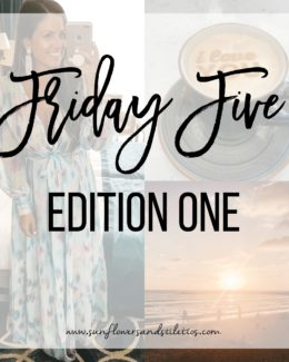 Friday Five Edition One, Sunflowers and Stilettos blog