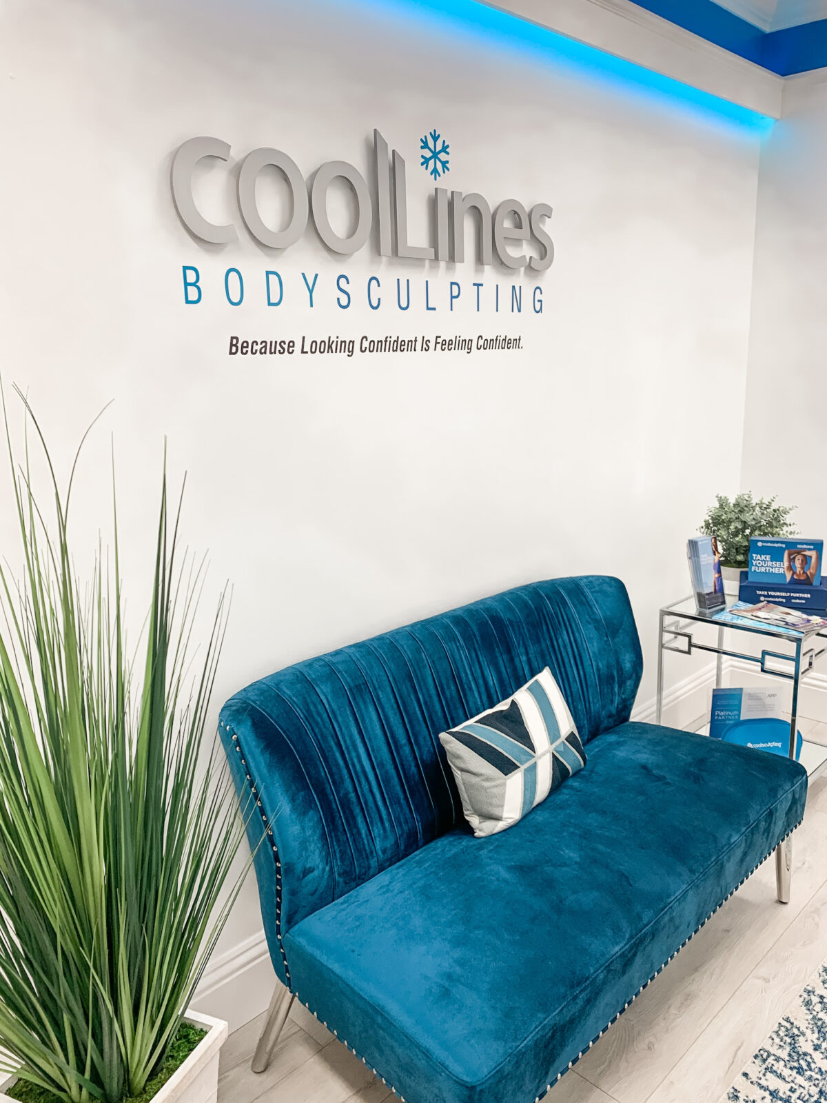 CoolLines Palm Beach, Bodysculpting CoolSculpting CoolTone, Hamilton Aesthetics